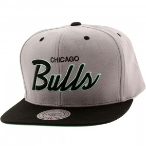 Mitchell And Ness Chicago Bulls Lady Liberty Snapback Cap (gray / black / teal)
