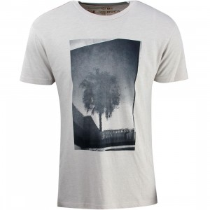 RVCA Men Palm Reflection Tee (gray / cool gray)