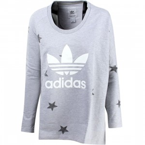 Adidas Women Originals LS Tops Crewneck (gray / medium gray heather)