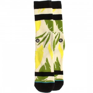 Stance Hamhock Socks (white / green)
