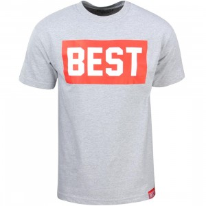 Breezy Excursion Men Best Block Tee (gray)