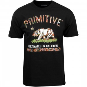 Primitive Men Cultivated Blaze Tee (black)