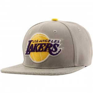 Pro Standard NBA Los Angeles Lakers Logo Adjustable Cap (gray / yellow)