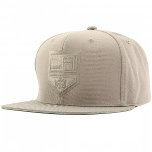 Mitchell And Ness Los Angeles Kings Tonal Ballistic QS Snapback Cap (gray)