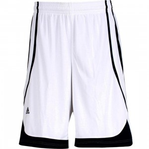 Adidas Pro Team Shorts (white / college navy)