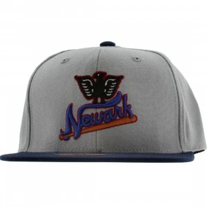 American Needle Newark Eagles Negro League Snapback Cap (light grey / navy)