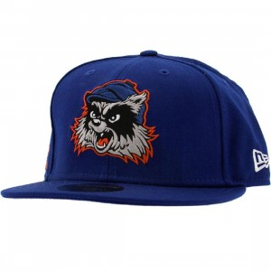 Crooks and Castles Racoon New Era Fitted Cap (blue)