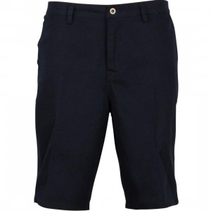 DC Chino 2 Shorts (dark navy)