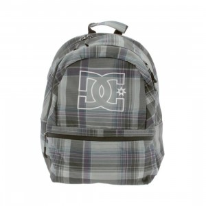 DC Recess Backpack (grey)