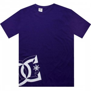 DC D Star Tee (purple)