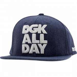 DGK All Day Chambray Snapback Cap (blue)
