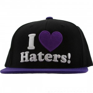 DGK Haters Snapback Cap (black / purple)