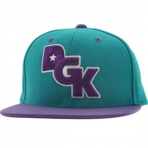DGK Stagger Snapback Cap (teal / purple)
