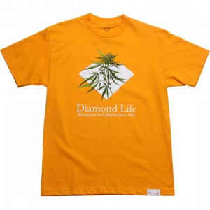 Diamond Supply Co Homegrown Tee (gold)