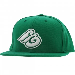Expedition Tri E Snapback Cap (kelly green)