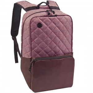 Focused Space The Curriculum Backpack (burgundy)