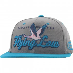 Gold Flying Low Starter Snapback Cap (grey / teal)
