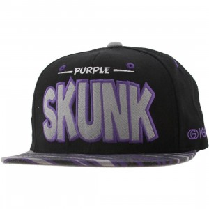 Gold Skunk Starter Snapback Cap (purple / black)