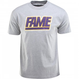 Hall Of Fame Chenille Fame Block Tee (gray / gray heather)