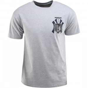 Hall Of Fame Valor Tee (gray / gray heather)