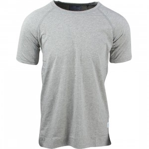 Asics Tiger x Reigning Champ Men Tee (grey / heather grey)