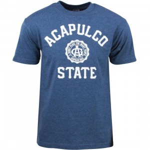 Acapulco Gold Men Acapulco State Tee (blue / heather)