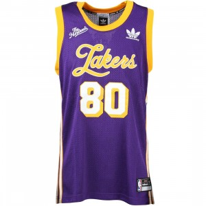 Adidas Skate x The Hundreds Men LA Lakers Jersey (purple / gold)