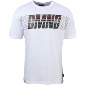 Diamond Supply Co Men Triathalon Tee (white)