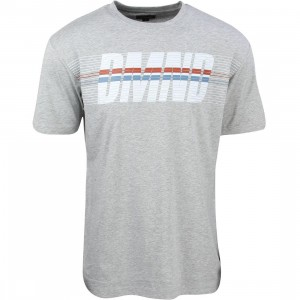 Diamond Supply Co Men Triathalon Tee (gray / heather grey)