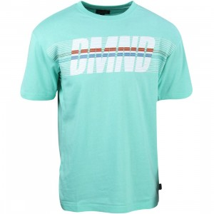 Diamond Supply Co Men Triathalon Tee (blue / diamond blue)