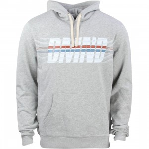 Diamond Supply Co Men Triathalon Hoodie (gray / heather grey)