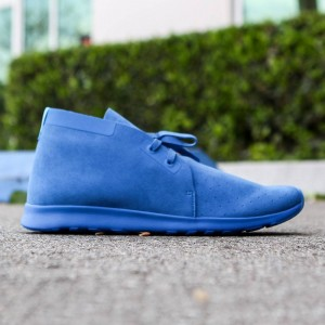 Native Men Apollo Chukka (blue / barracuda blue)