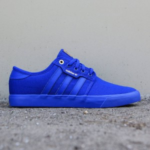 Adidas Skate Men Seeley (blue / core royal)
