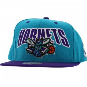 Mitchell And Ness Charlotte Hornets Retro Snapback Cap (blue / purple)