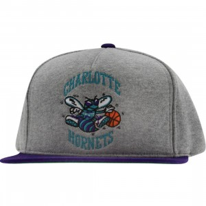 Mitchell And Ness Charlotte Hornets NBA Heather Fleece 2 Tone Pinch Snapback Cap (heather grey / purple)