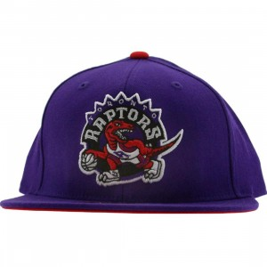 Mitchell And Ness Toronto Raptors Basic Fitted Cap (purple)