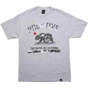 Primitive Cultivated Camo Tee (athletic heather)