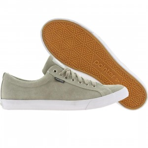 Pointer Seeker IV (fog grey)