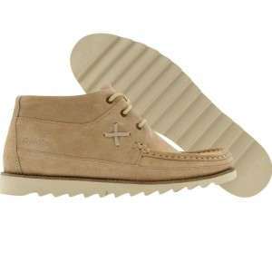 Pointer Conor (camel white)