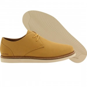 Pointer Men Crago (gold / honey gold)