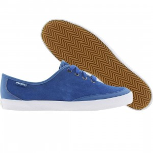 Pointer Womens Hesperus (electric blue)