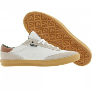Pointer Fairbank (white)