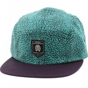 Rastaclat Asphalt 5 Panel Camper Adjustable Cap (turquoise / purple)