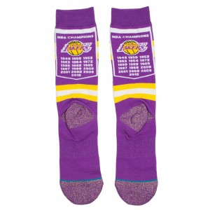 Stance x NBA Men Lakers Banner Socks (purple)