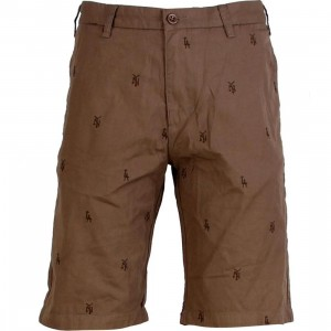 Stussy City Shorts (brown)