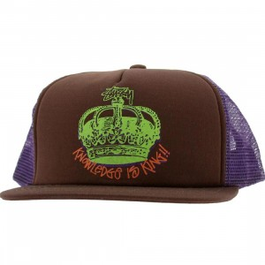 Stussy Knowledge Crown Snapback Cap (brown)