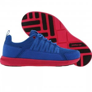 Supra Men Owen - Fast (royal mesh / magenta)