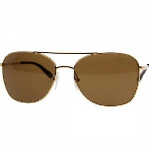 The Hundreds Morrison Sunglasses (gold)