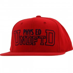 Undefeated Phys Ed Starter Snapback Cap (red)