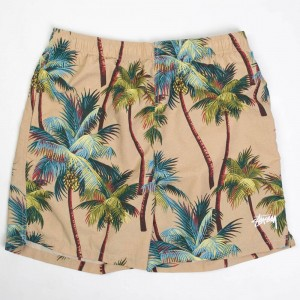 Stussy Men Palm Shorts (khaki)